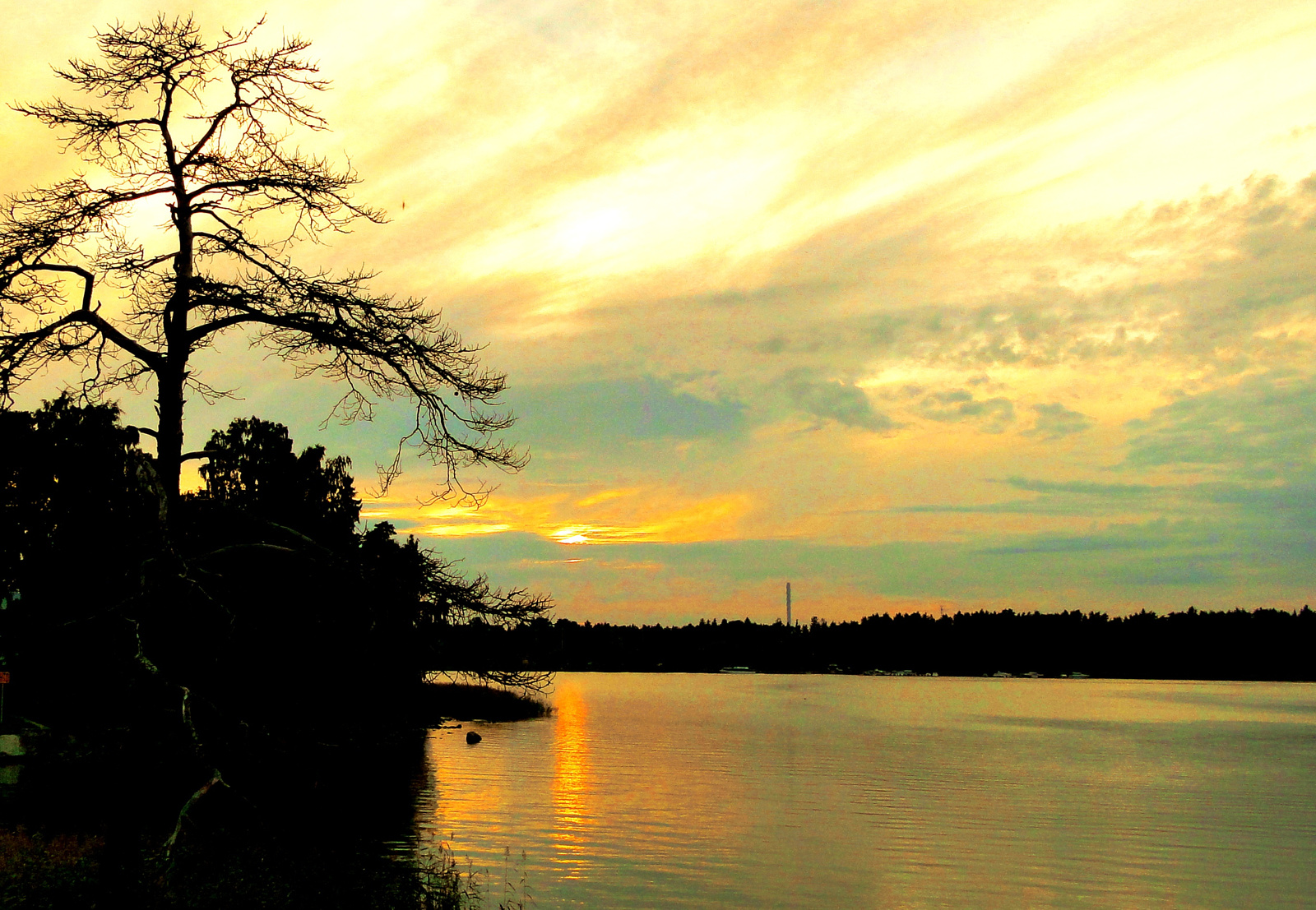 Arany naplemente