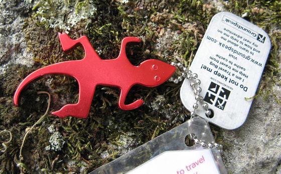 Red Geko - 2009.09.10.