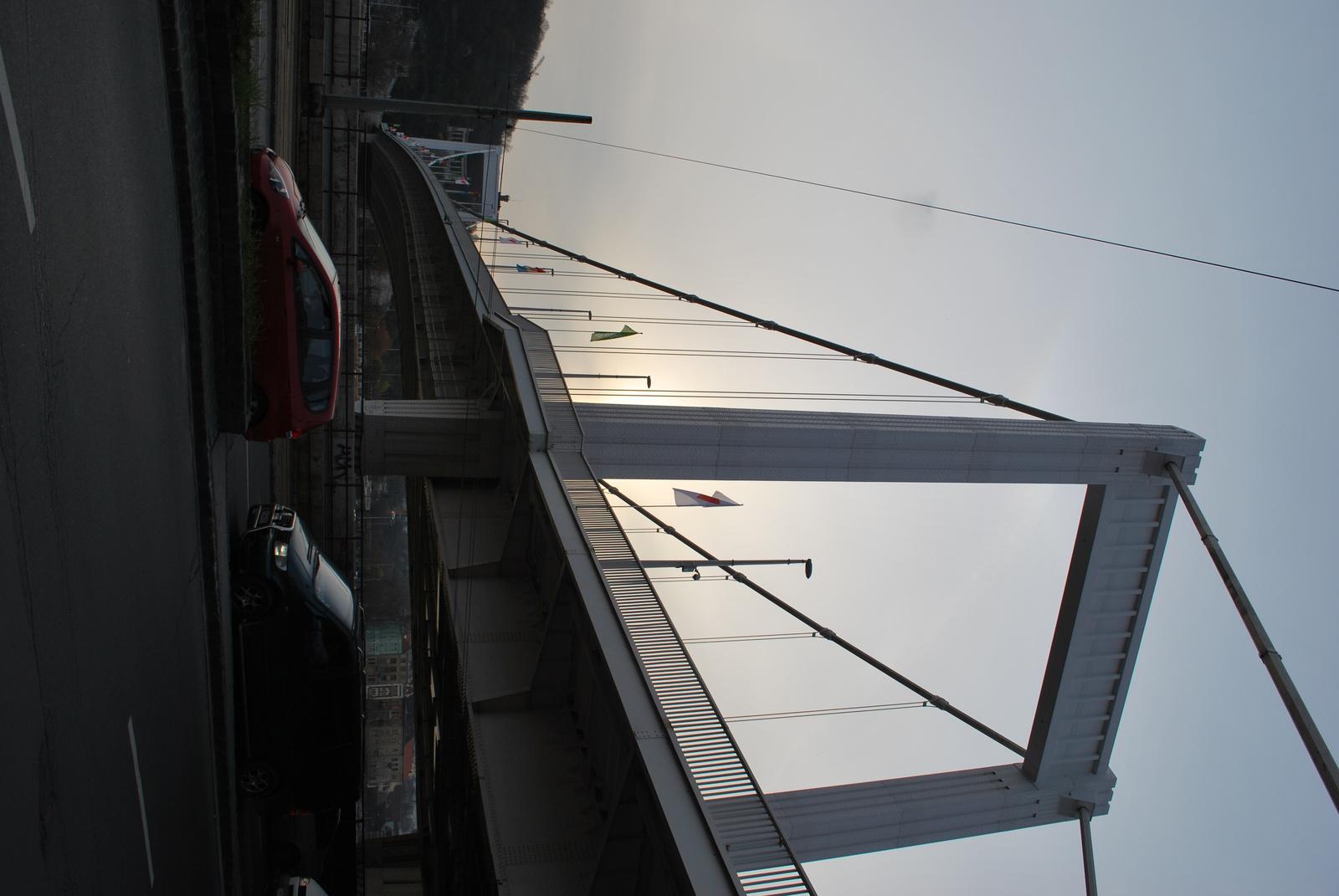 DSC 0620 Erzsébet híd