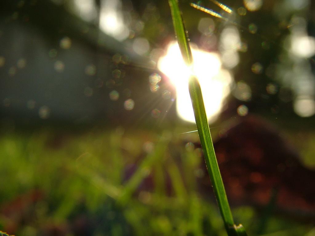 Őszi fények