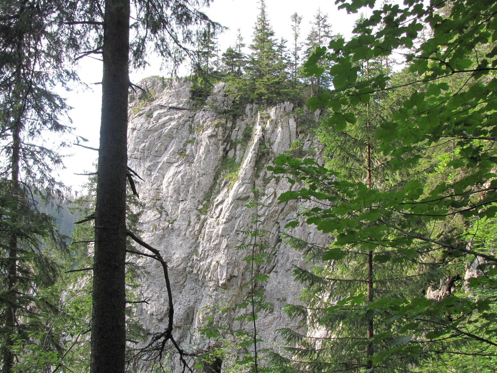 Tátra Nemzeti Park, Dolina Kościeliska, kilátás a barlang kijára