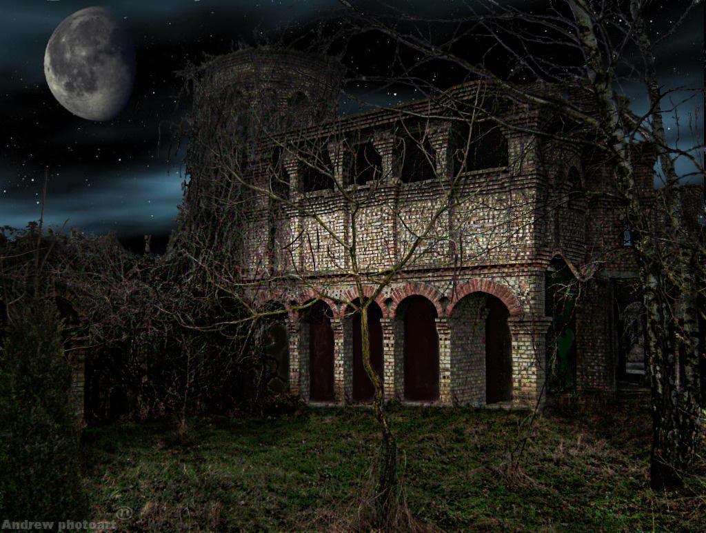 Moon on Foggy Night